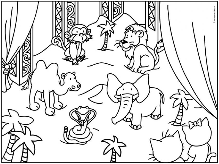 Circus animals (Animals) - Page 2 - Printable coloring pages