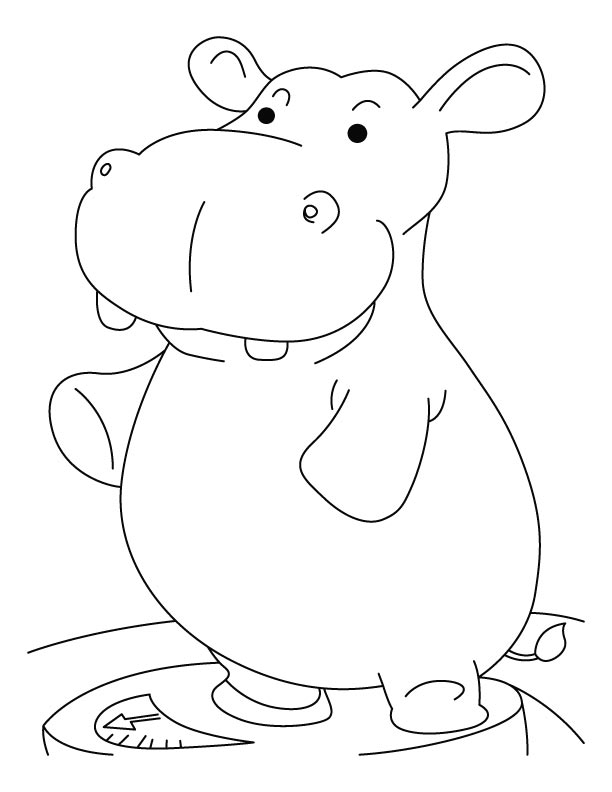 Hippopotamus 8681 Animals Printable Coloring Pages