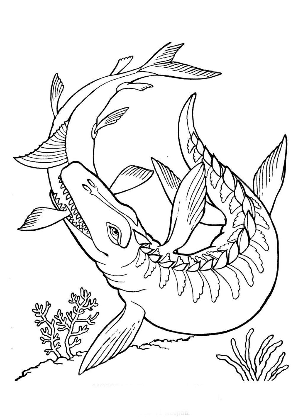 Jurassic Park 15959 Movies Printable Coloring Pages