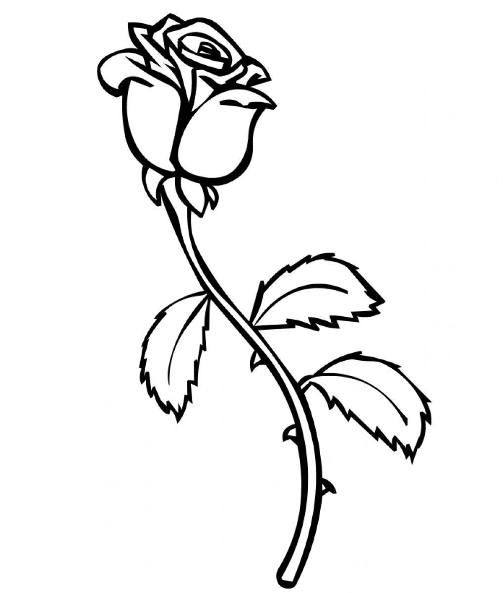 Roses #7 (Nature) – Printable coloring pages