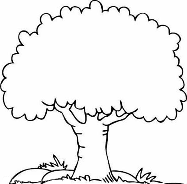 Tree 154682 Nature Printable Coloring Pages